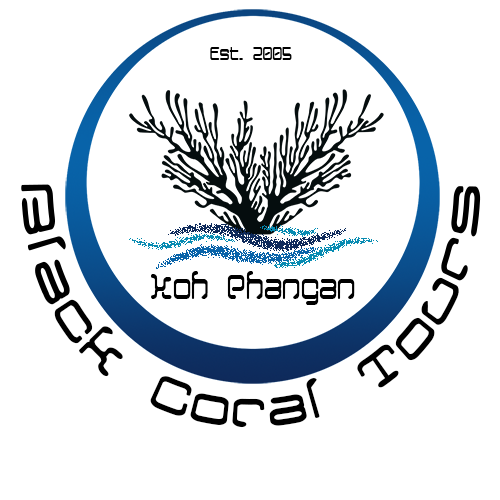 Black Coral Tours Koh Phangan Fishing Tour