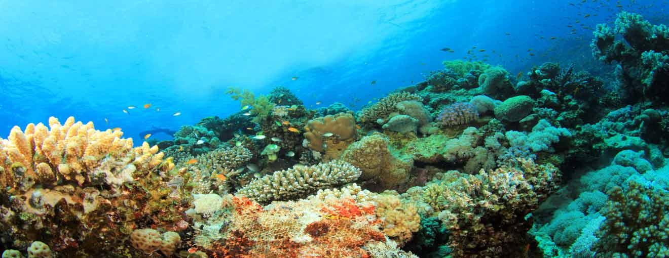 koh ma phangan - 4 Spots to Discover on Koh Phangan